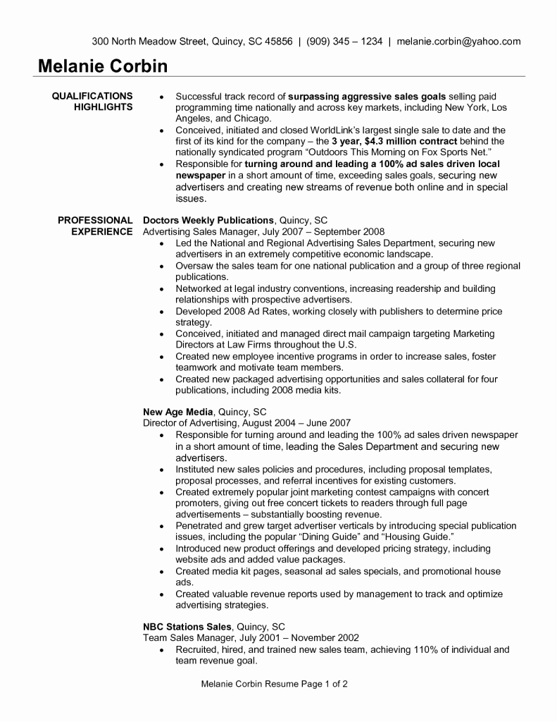 Media Buyer Resume Objective Account Executive Skills