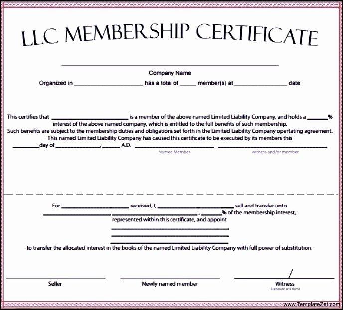 Membership Certificate Template Download