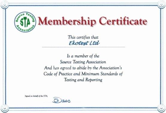 Llc Member Certificate Template Latter Example Template