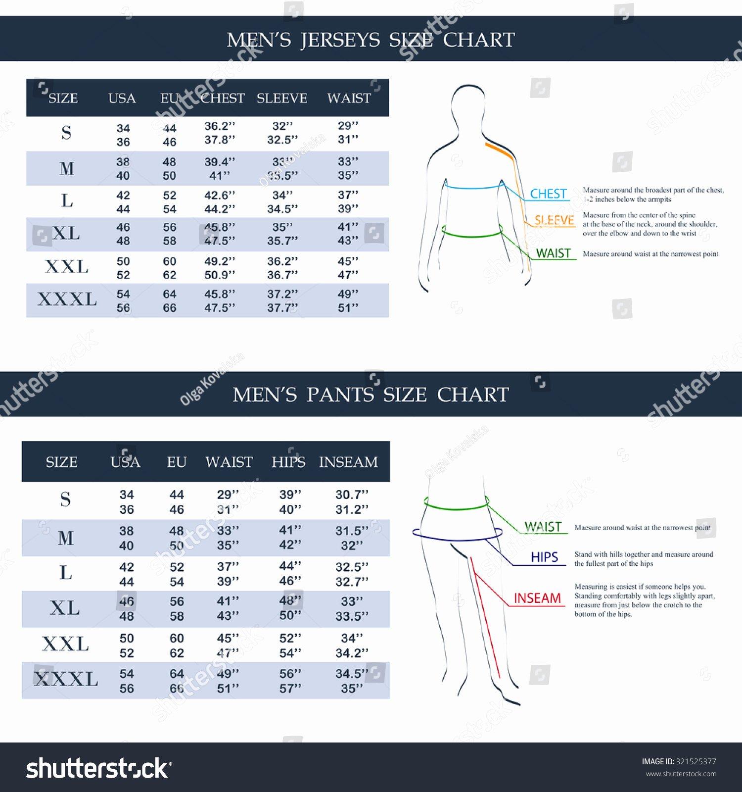 Mens Jerseys Pants Size Chart Measurements Stock Vector