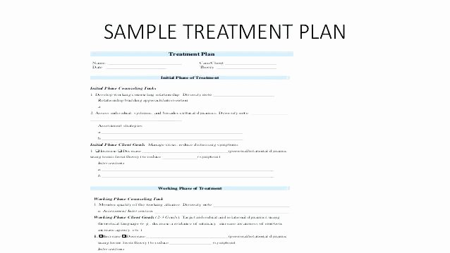 Mental Health Treatment Plan Template Planning Sample