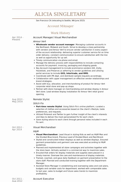 Merchandiser Resume Sample