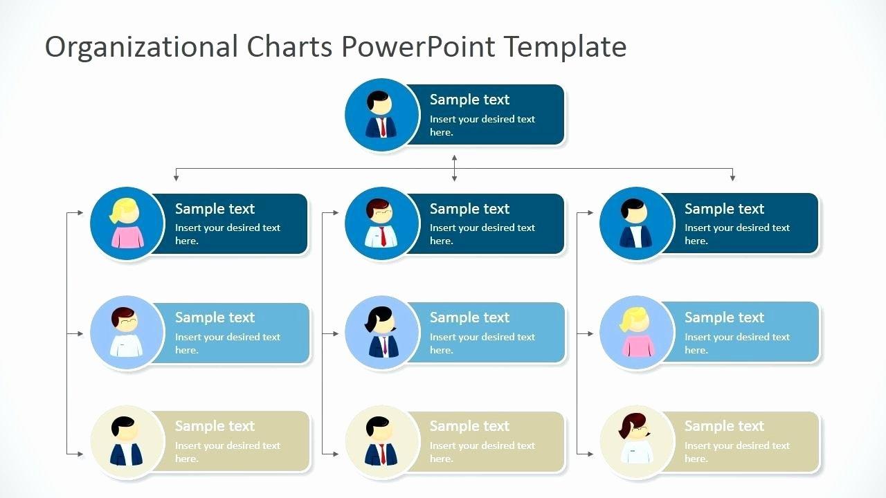 Microsoft Office organizational Chart Template thevillas