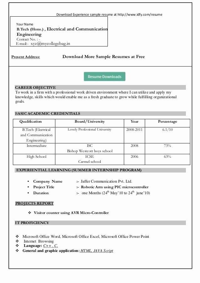 Microsoft Word 2007 Invoice Template