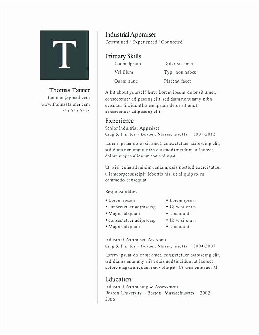 Microsoft Word 2007 Resume Templates – Foodandme
