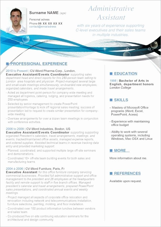 Microsoft Word Cv Template Download Microsoft Word Resume