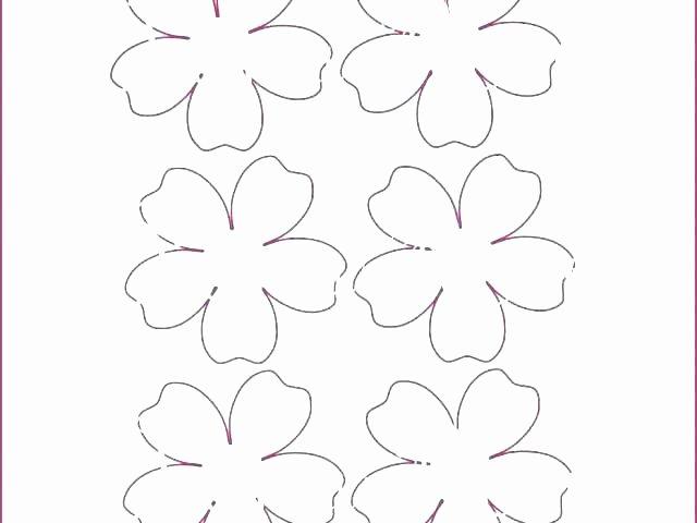 Mini Paper Flower Template – Hafer