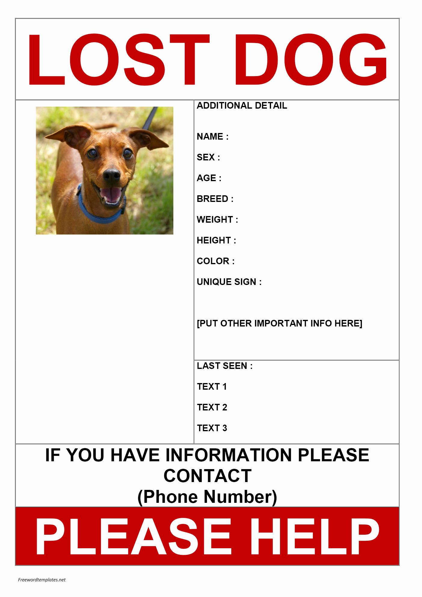 Missing Dog Poster