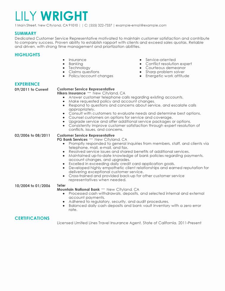 Mock Resume