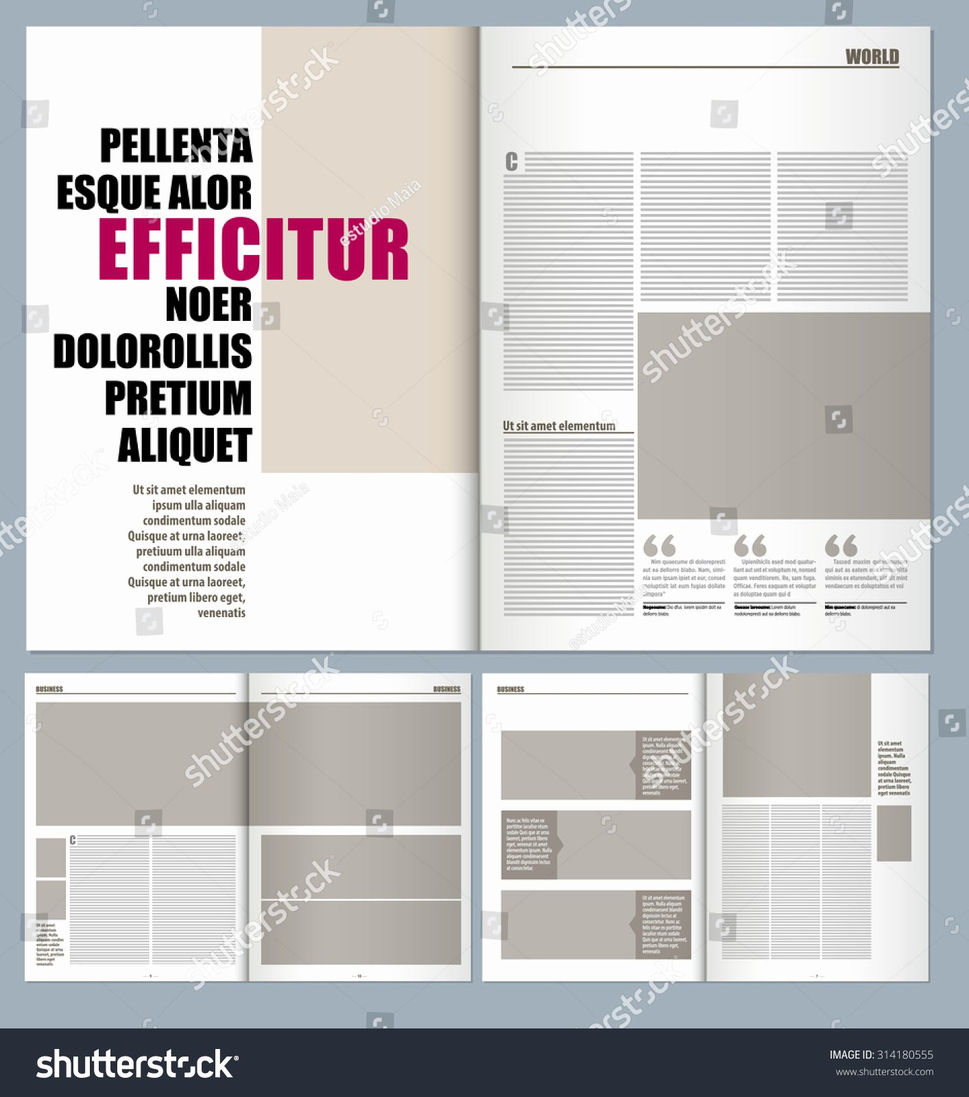 Modern Magazine Layout Template Stock Vector