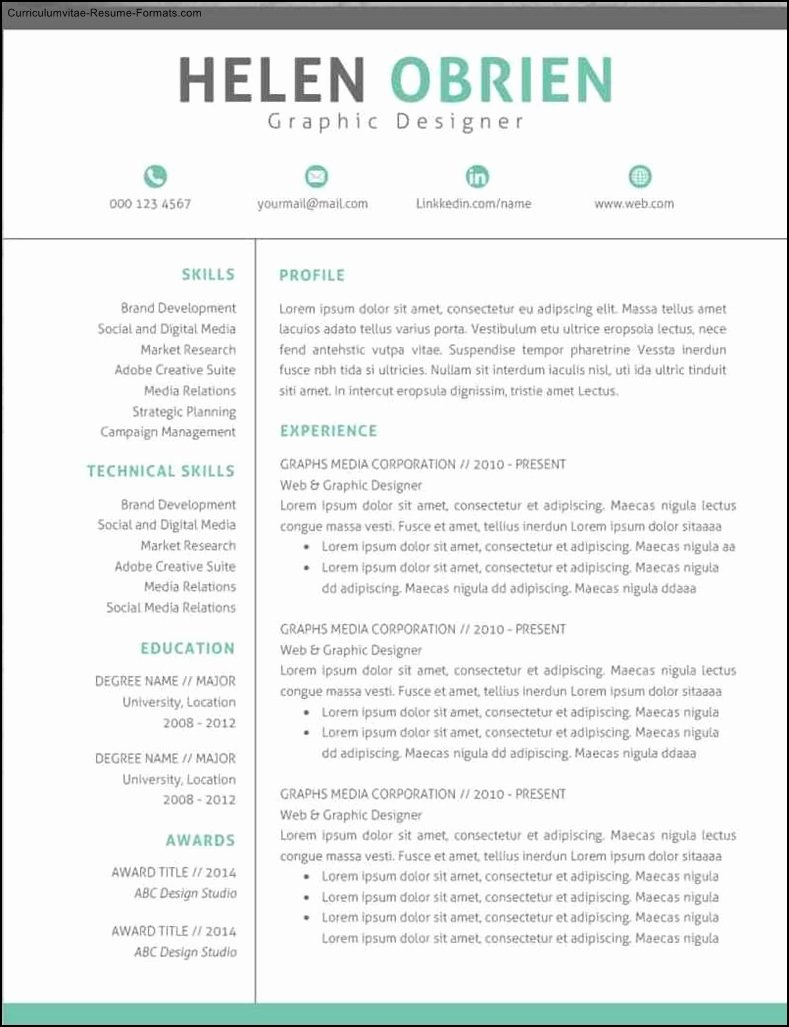 Modern Professional Resume Templates Free Samples