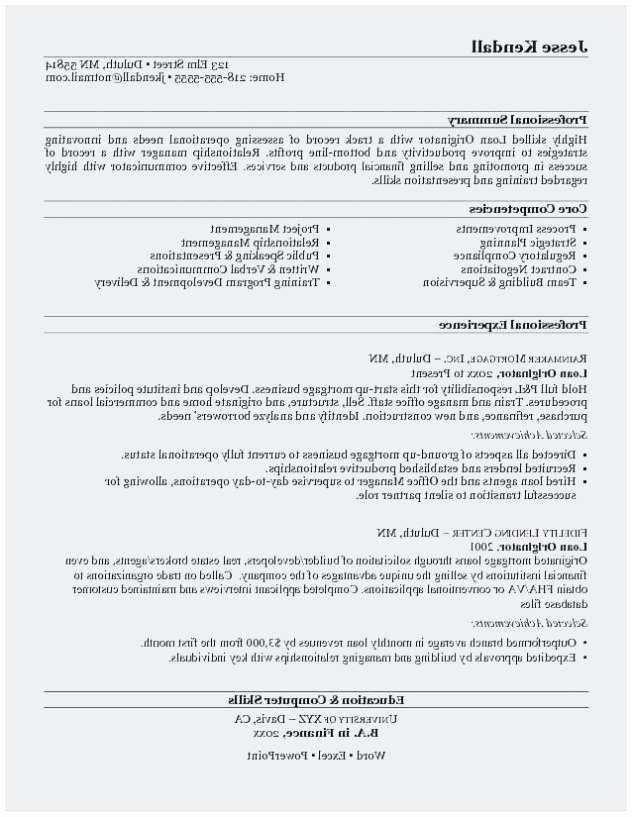 Mortgage Loan Ficer Resume
