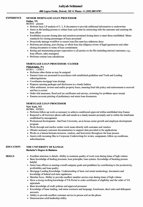 mortgage loan processor resume sample