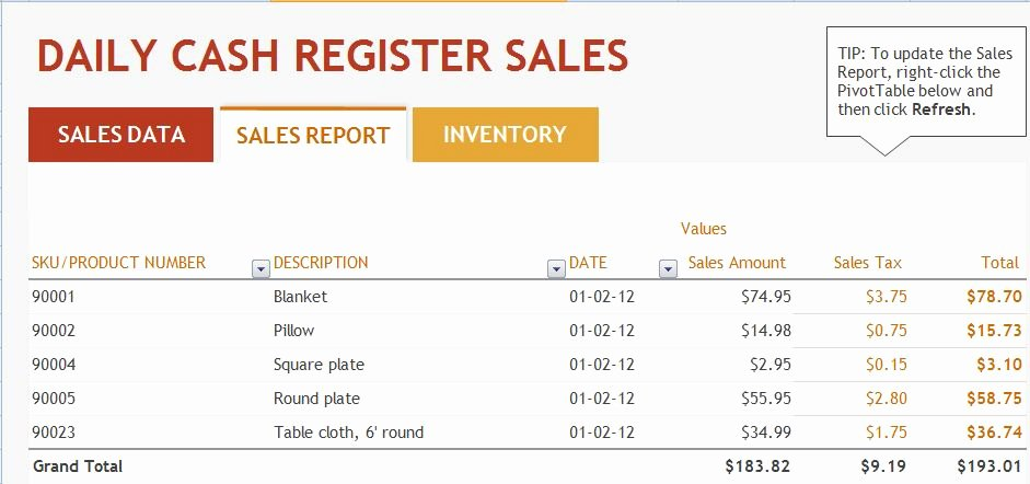 Ms Excel Daily Sales Report Template
