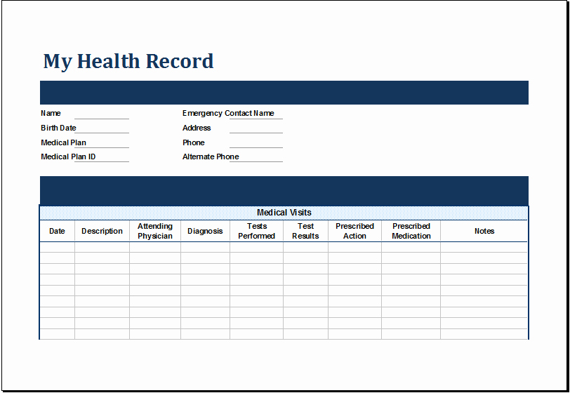 Ms Excel Personal Medical Health Record Template