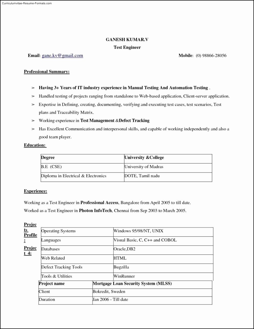 Ms Word 2010 Resume Templates Free Samples Examples