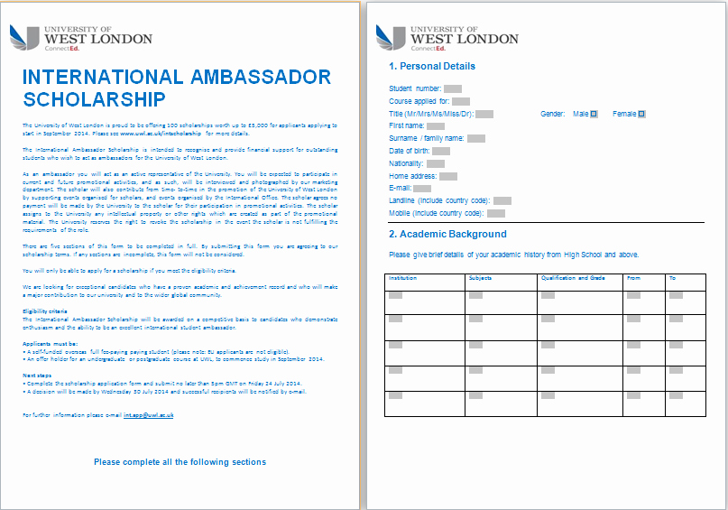 Ms Word formal Scholarship Application form Template