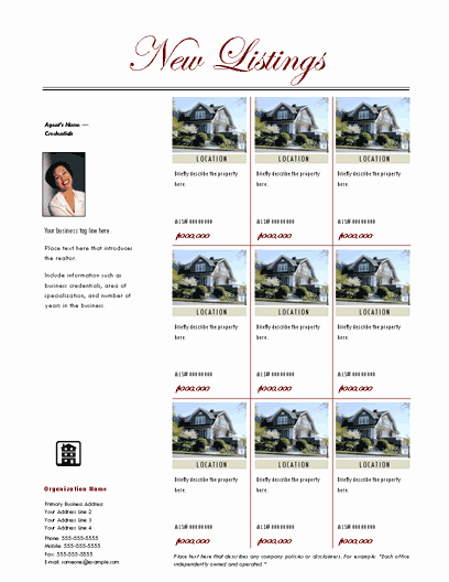 Multiple Listing Flyer Template with Agent Intro