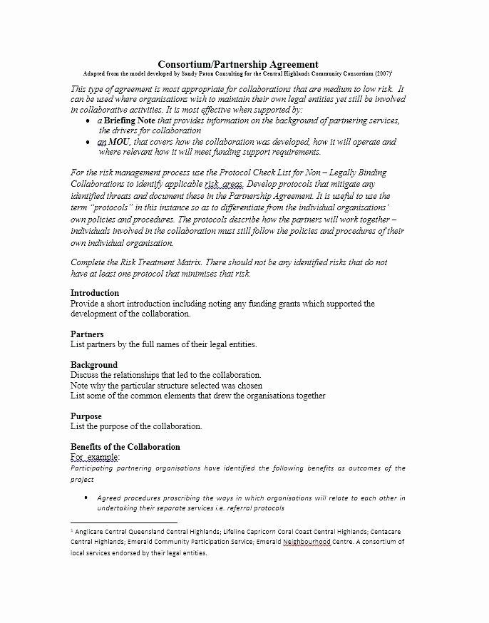 Munity Partnership Agreement Template Free Templates