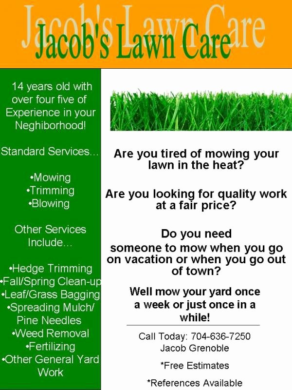 My Lawn Care Flyer What Do You Think