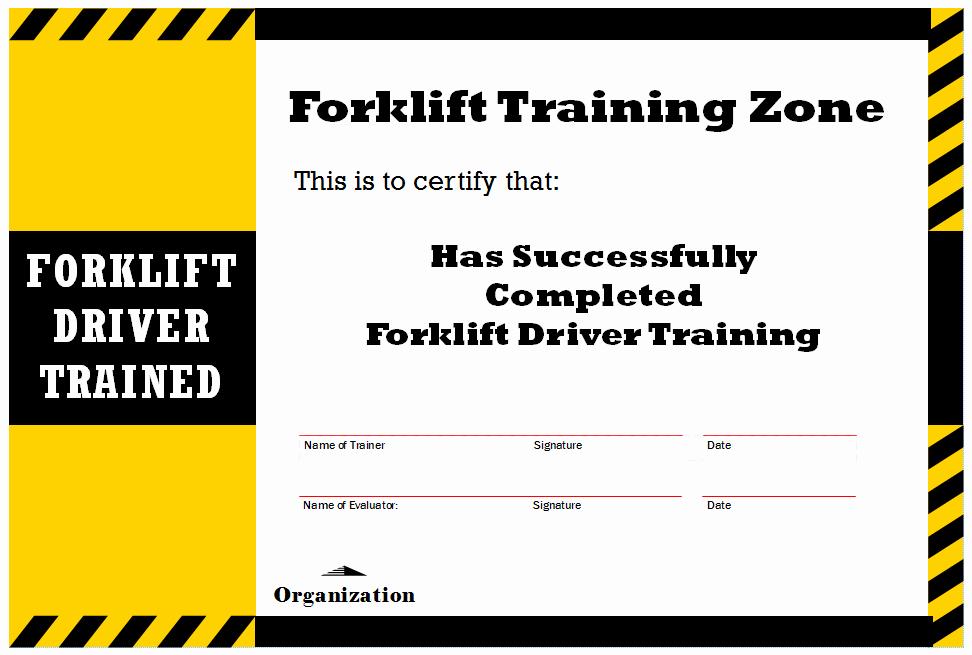 New Blog 1 forklift Certification