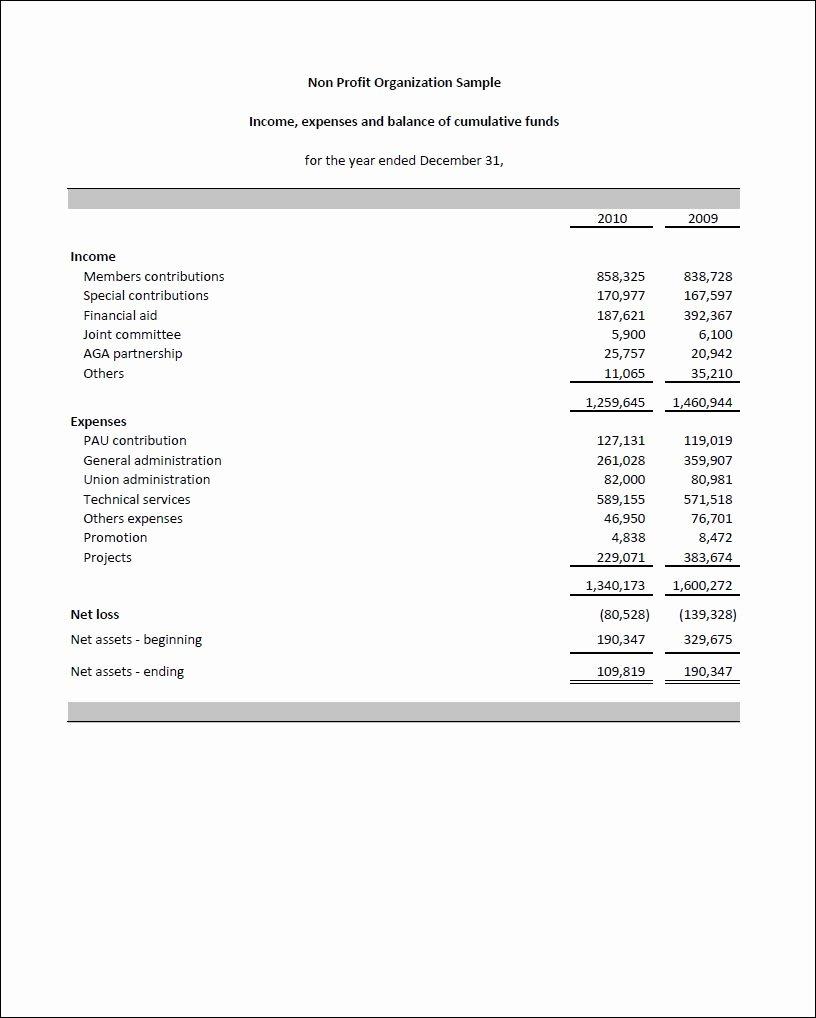 Non Profit Balance Sheet Template Excel La Portalen