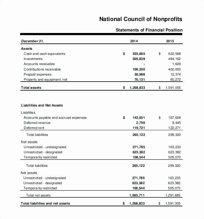 Non Profit Balance Sheet Template Excel Non Profit Balance