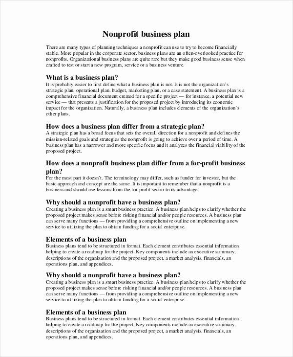 Non Profit Business Plan 12 Free Pdf Word Documents