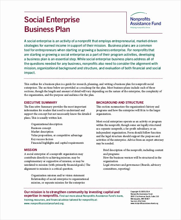 Non Profit Business Plan 12 Free Pdf Word Documents