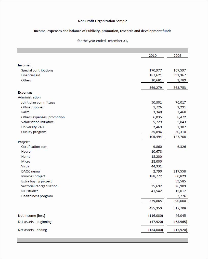 nonprofit balance sheet resume template ideas 3