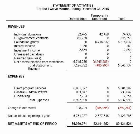 Non Profit Financial Statement Template Free 2016