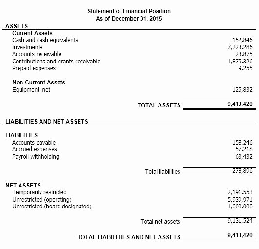 Non Profit Financial Statement Template Free 2016