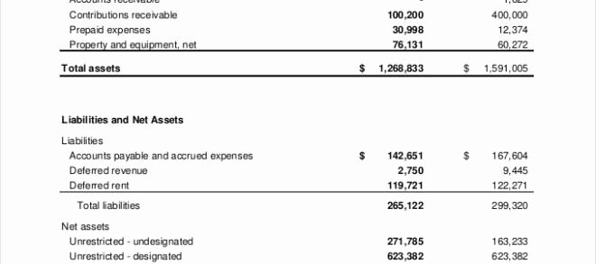 Non Profit Financial Statement Template Pdf