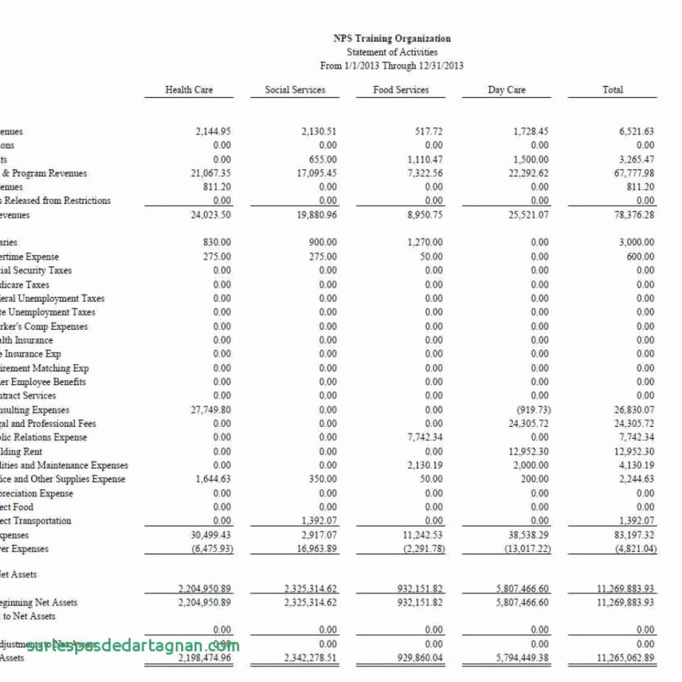 Non Profit Financial Statements Example Report Sample