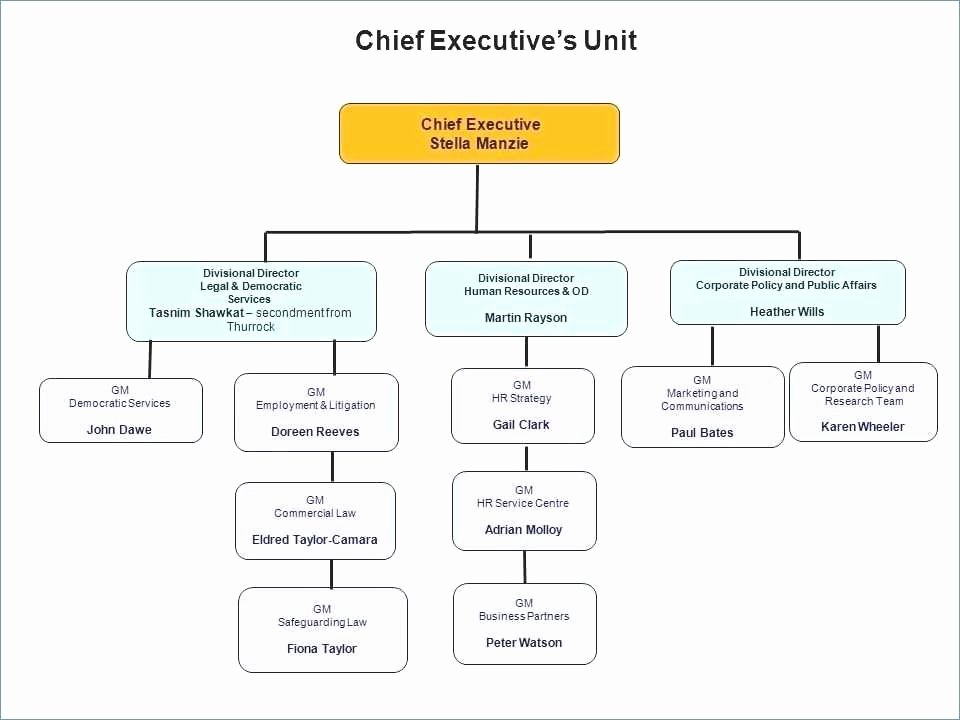 Non Profit organizational Chart Template Inspirational