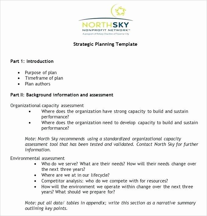 Non Profit Strategic Plan Template Free Word Documents