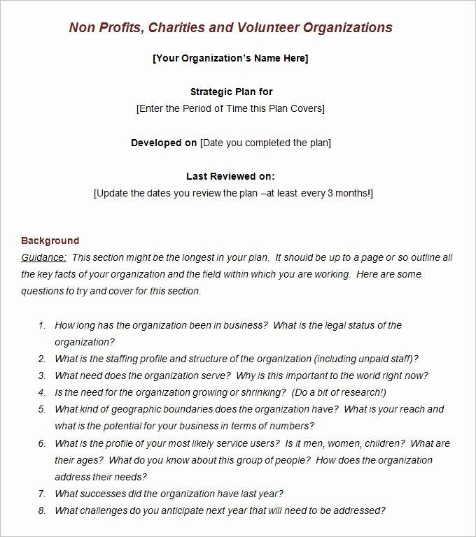 Non Profit Strategic Plan Template Free Word Pdf