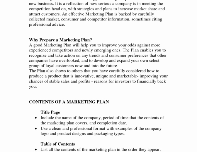 Nonprofit Business Plan Template Inspirationa Free
