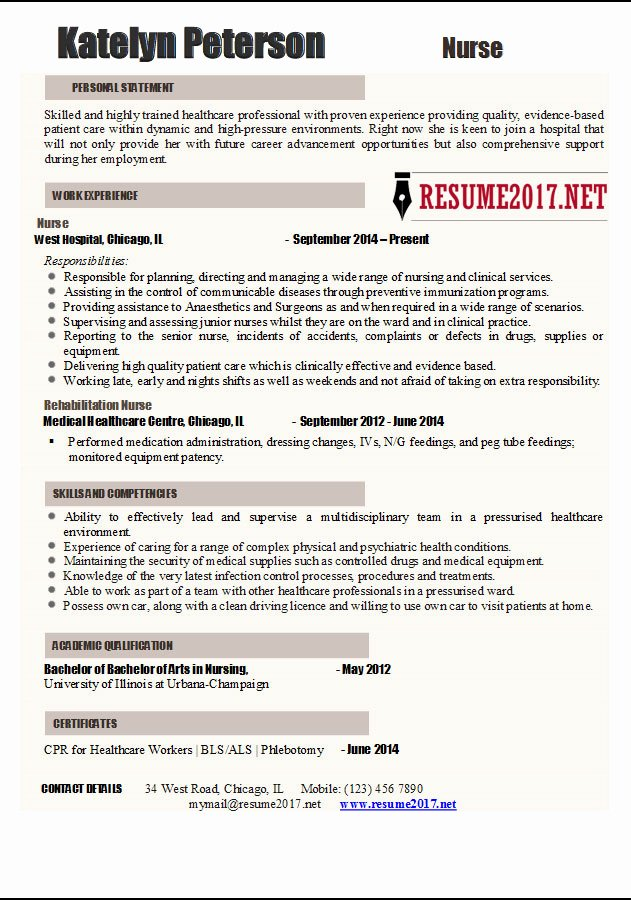 Nurse Resume 2017 Examples