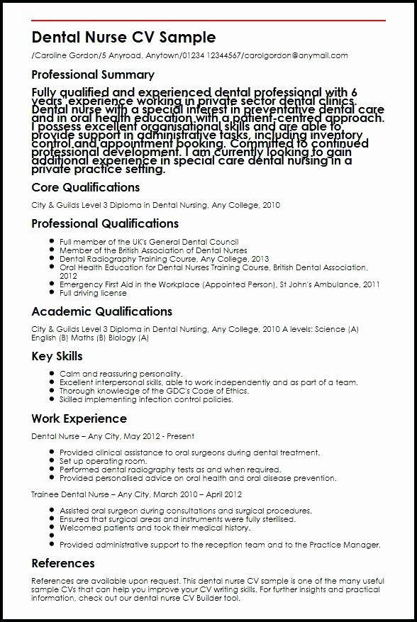 Nurse Resume Example – Mkmafo