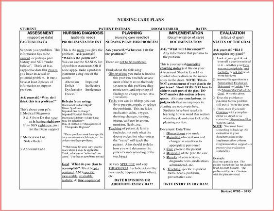 Nursing Care Plan Template Free Download