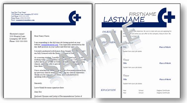 Nursing Resume Templates Plus An Ebook Job Guide for Nurses