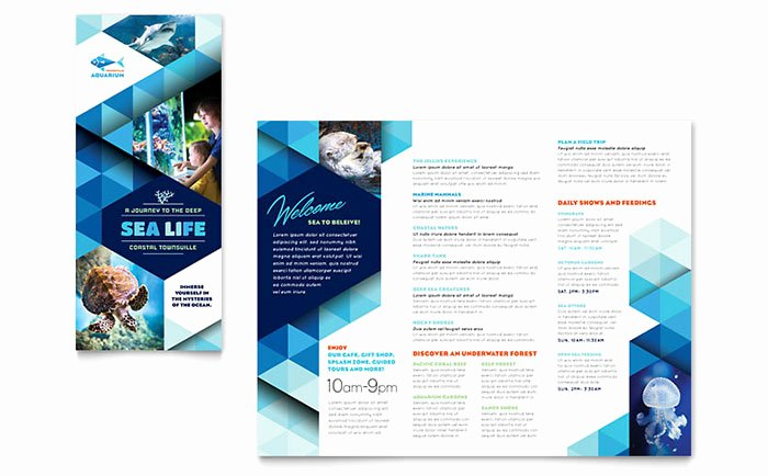 Ocean Aquarium Brochure Template Word & Publisher