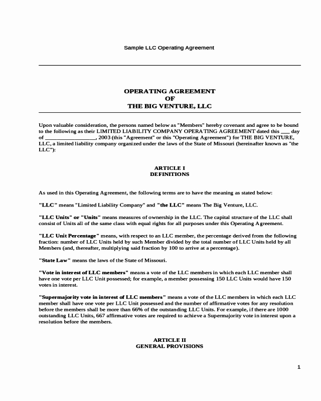 Operating Agreement Of the Big Venture Llc Edit Fill