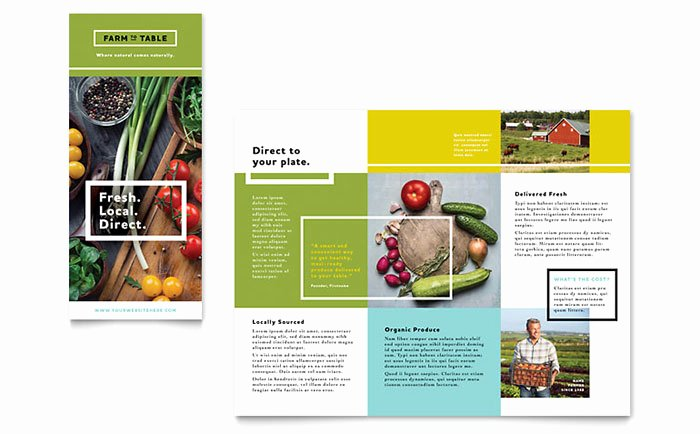 Organic Food Brochure Template Word & Publisher