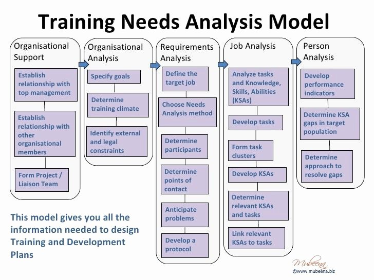Organisational Training Needs Analysis Template Google