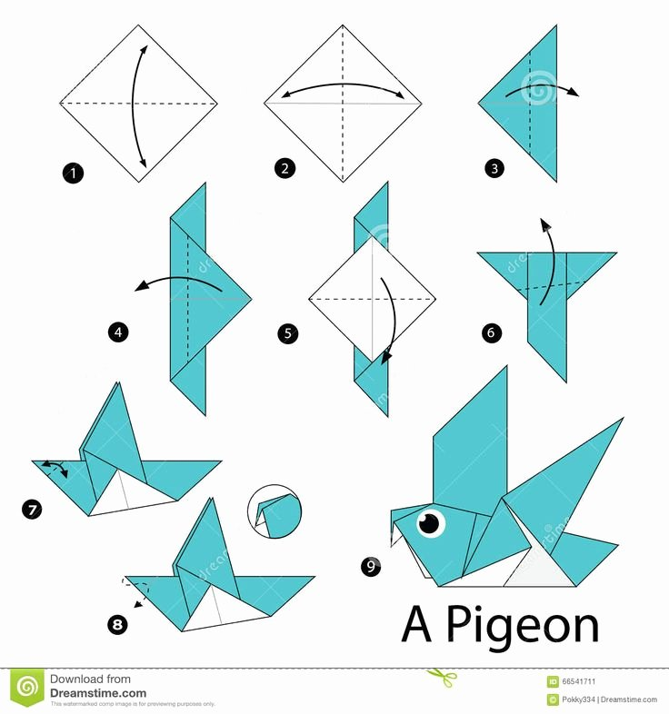Origami Step by Step Easy How to Make A origami Step Step