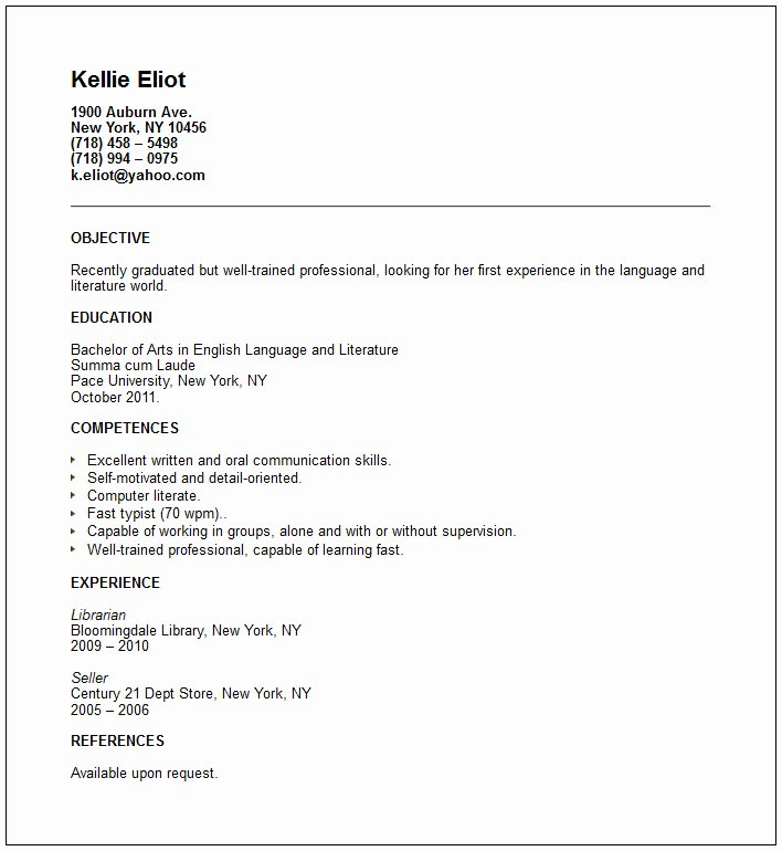 Other Professionals Resume Examples
