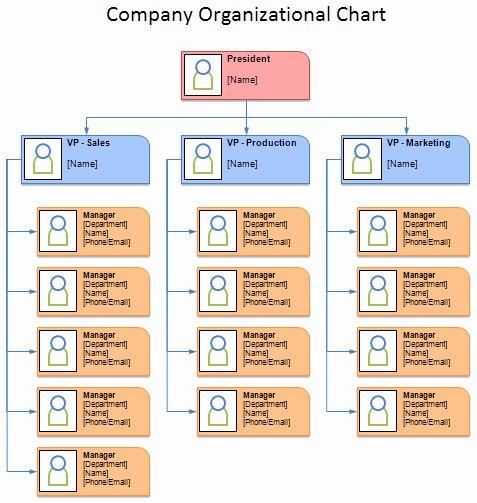 Pany organizational Chart Microsoft Templates
