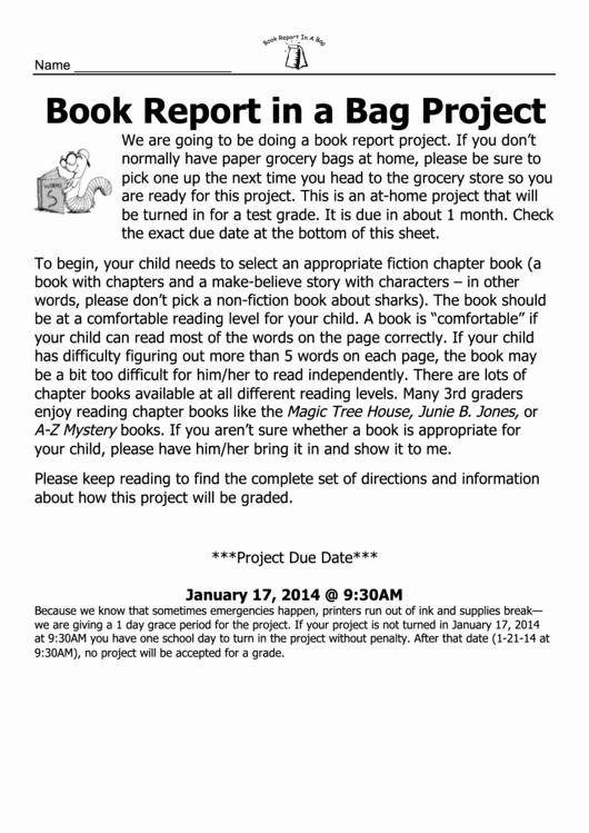Paper Bag Book Report Printable Pdf